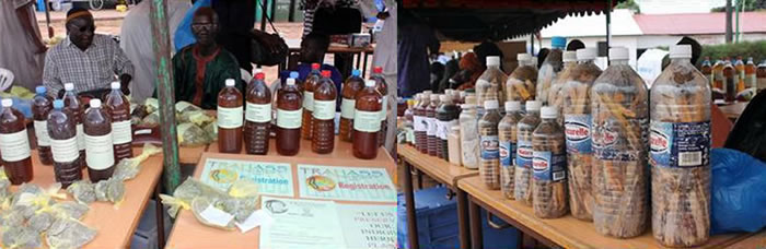 Gambia observes African Traditional Medicines Day (TRM) 2012