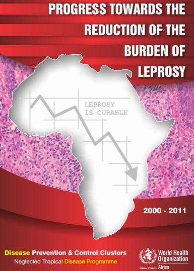 Progress towards the reduction of the burden of leprosy