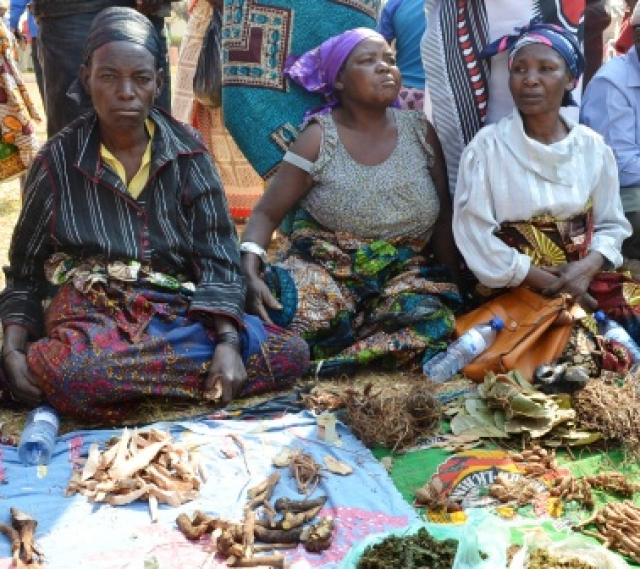 traditional african medicine Traditional medicine or african traditional medicine this medicine is traditional because it is deeply ro o t e d in a specific socio-cultural context, which varies fro m.