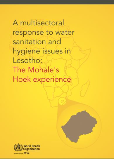 A multisectoral response to water sanitation and hygiene issues in Lesotho: The Mohale's Hoek experience