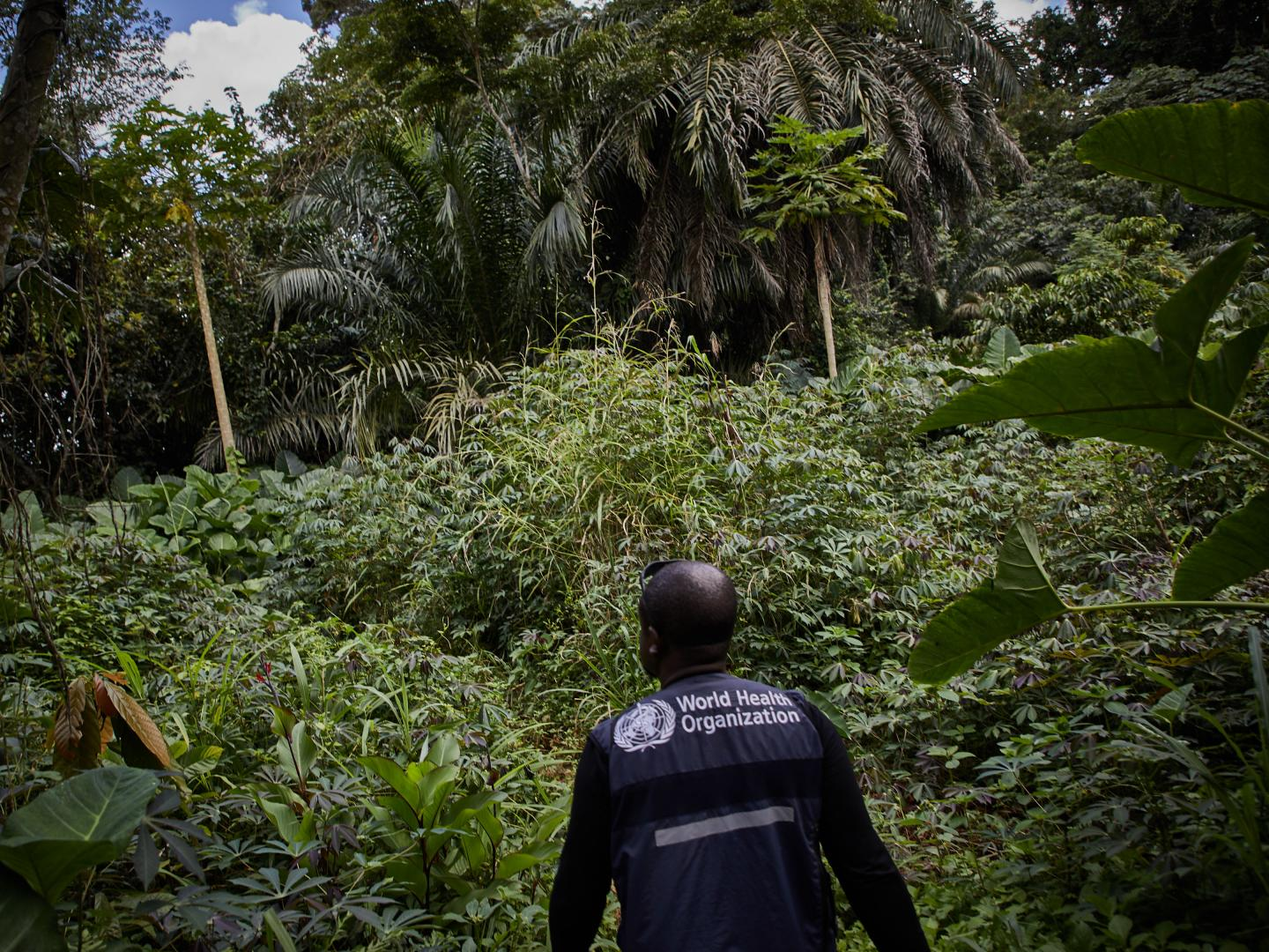 Resurgence of Ebola in North Kivu in the Democratic Republic of the Congo