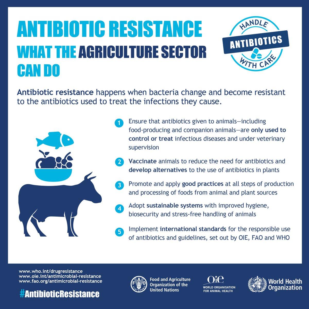 The health threat of antibiotic resistance essay