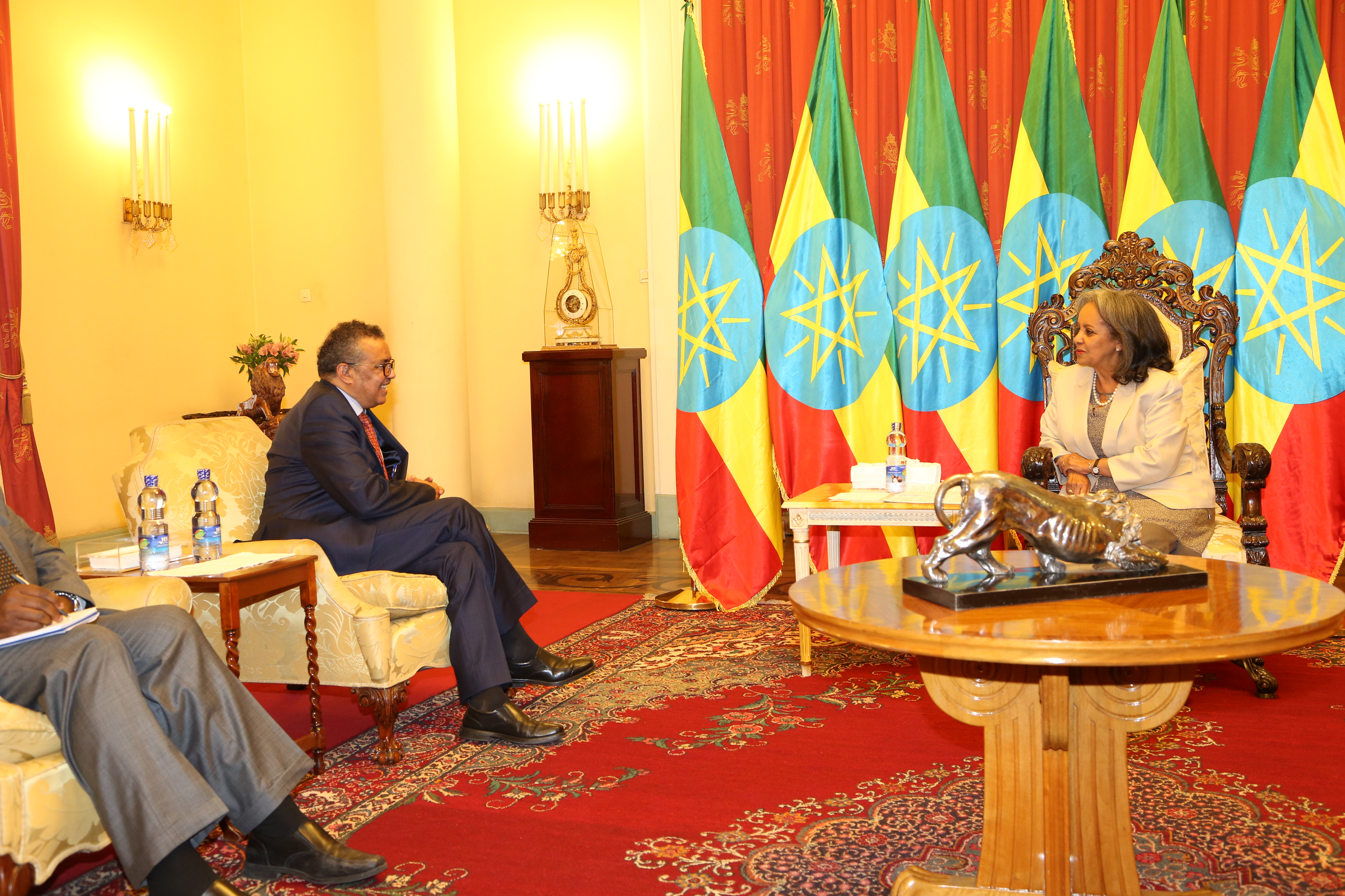 DG discussing with H.E. Mrs. Sahle-work Zewde, president of Ethiopia