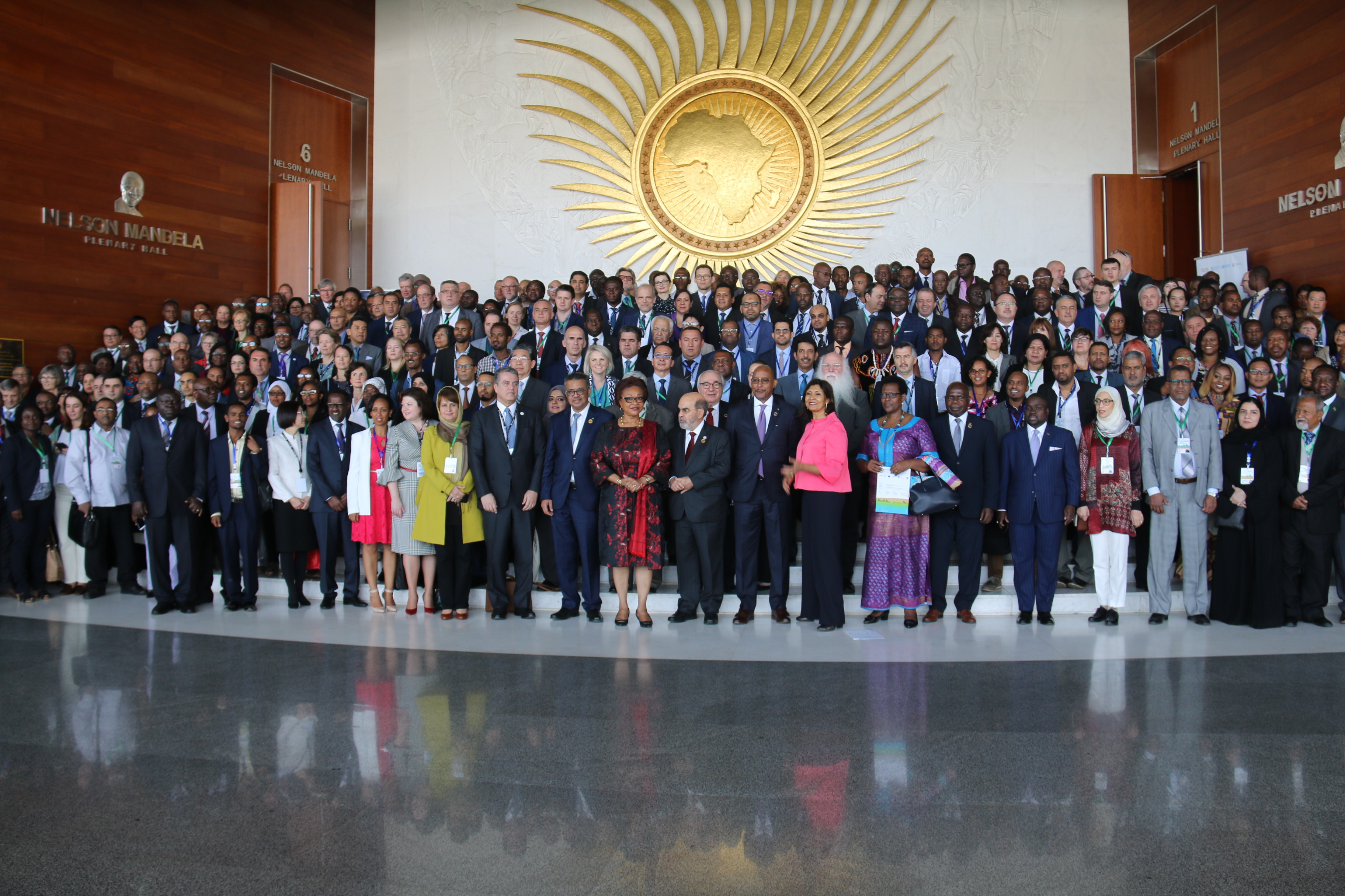 Participants of the First FAO/WHO/AU International Food Safety Conference