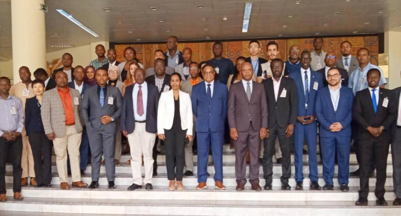 Participants included 31 PHEOC trainers from 22 Member States of the WHO African Region and the WHO Mediterranean Region
