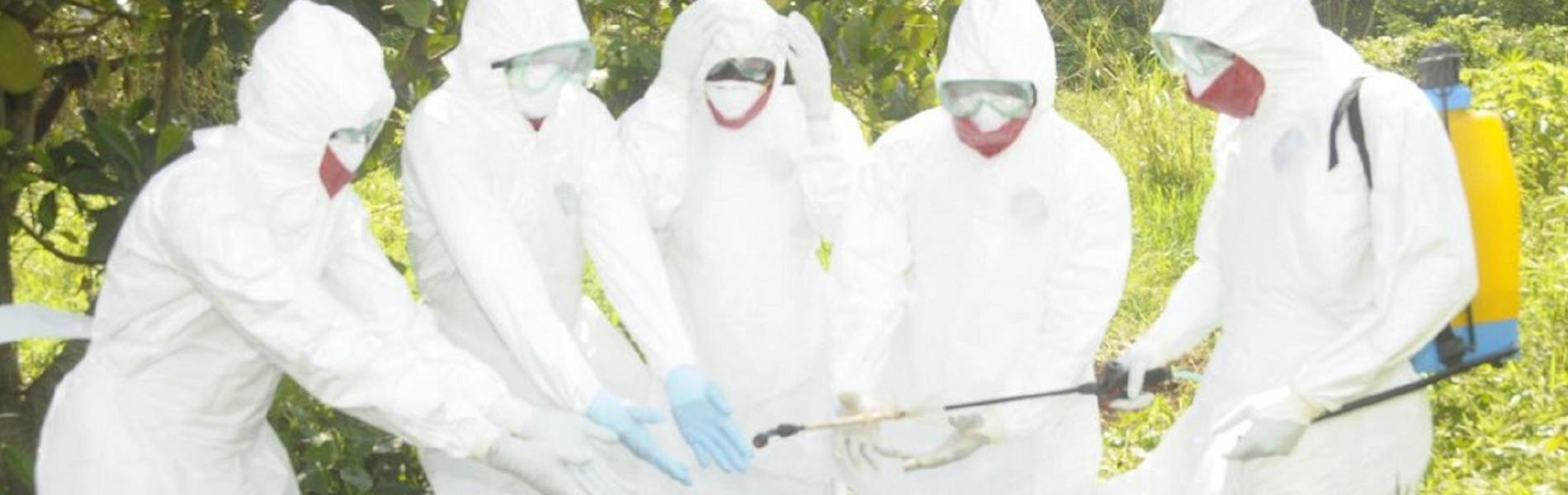 WHO supports containment of rare virus on Uganda-Kenya border