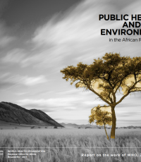 This report presents the work of WHO in managing environmental determinants of human health in the African Region over the period 2012-2013. It highlights WHO's progress in strengthening the policy framework and the strategic agenda during the biennium. This report is intended to present to governments, partners and the general public, WHO's progress and achievements in the area of health and environment.