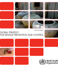 Global Strategy for dengue prevention and control, 2012–2020