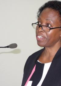 Health Sector Strategic Development Plan II