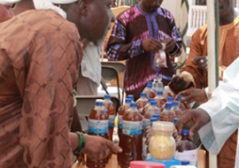 African Traditional Medicines day 2014