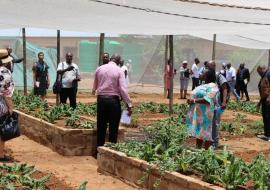 Guidance and Counselling teacher explaining elevatated vegetable garden plots