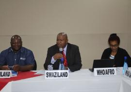 Eswatini National Malaria Programme manager chairing the meeting