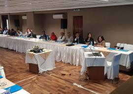 Dr Tapko providing technical support to the health professionals and other key stakeholders in view of formulating the Blood Policy and develop the Strategic Framework of Action for Blood Service for Mauritius