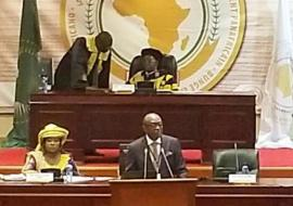 The second ordinary session of the fifth Pan-African Parliament took place in Midrand, South Africa from 6-17 May