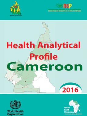 Health analytical profile : Cameroon - 2016