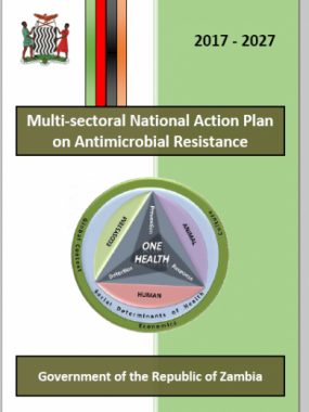 Multi-sectoral National Action Plan on Antimicrobial Resistance 2017-2027