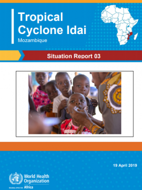 Cyclone Idai Mozambique Situation Report