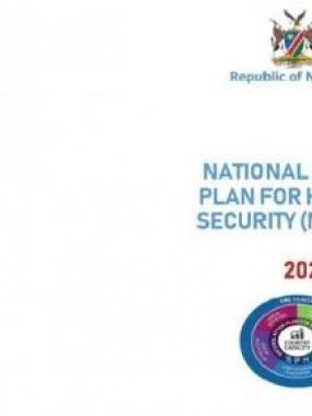 National  Action Plan for Health Security (NAPS)