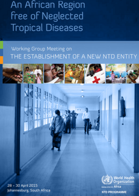 Working Group Meeting on the establishment of a new NTD entity