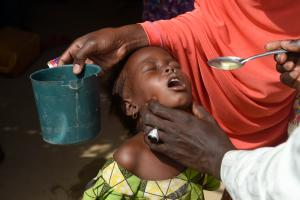 Integrated campaign tackles malaria and polio in north-eastern Nigeria