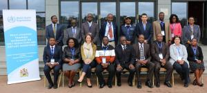Malawi hosts the first 'Salt reduction intercountry workshop in the African Region'