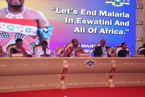 His Majesty King Mswati III and other diginitaries
