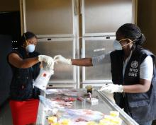 WHO Liberia staff review packaging information for specimens from victims who died after attending a wake and funeral on 21/22 April. These additional specimens were shipped on 12 May for investigations in Europe and Africa.