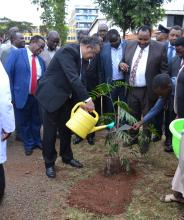 DG waters a tree after he planted it at Kiambu County Hospital in memory of his visit