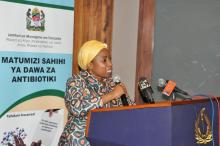 Honourable Ummy Ally Mwalimu, Minister of Health, Community Development, Gender, Elderly and Children giving a speech during the official launch of the STG/NEMLIT.