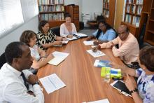 Delegation from St Helena Island meeting with WHO Technical Team