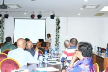 WHO Representative to Eritrea, Dr Josephine Namboze addressing the participants on MPDSR