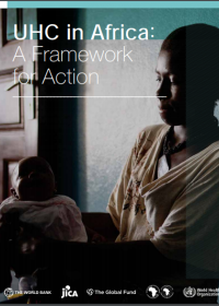 Universal health coverage in Africa: a framework for action