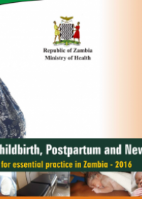 Pregnancy, Childbirth, Postpartum, and Newborn Care. Agenda for essential practice in Zambia