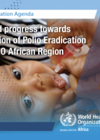 The Transformation Agenda Series 4: Sustained Progress towards Polio Eradication in the WHO African Region